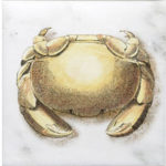 Crab Ocean Life Accent