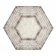 Encore-Echo-Hexagon-1024x950-225x225